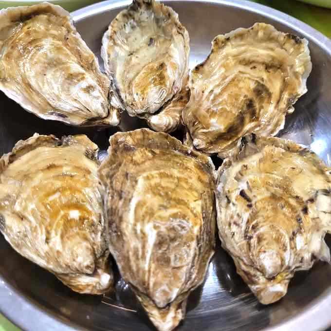 旨い『岩牡蠣』は夏が旬!種類と産地・おすすめの食べ方・死んでるカキの見分け方