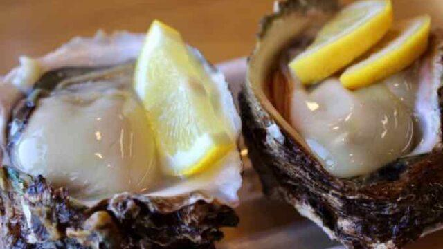 旨い牡蠣は冬だけじゃない!夏が『旬』!!『岩牡蠣』種類と産地!おすすめの食べ方