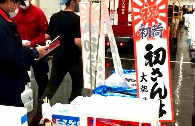 【2021初秋刀魚】今年は豊漁?値段は?豊洲市場に『初サンマ』並んだよ!最高値は『1尾3000円位』