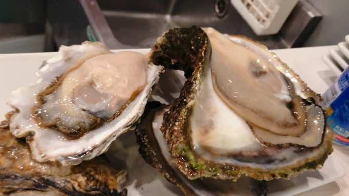 【豊洲市場・魚屋の魚話】岩ガキと真ガキの違いって何?旬・産地・おすすめの食べ方